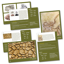 Rocks, Soils and Fossils Photopack  medium