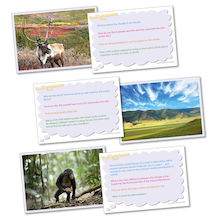 Thinking Geography: Biomes Picture Activity Cards  medium
