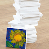 Mini Painting Canvas 15 x 15cm 30pk  small