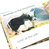 Animals In Their Habitats Books 6pk  small