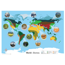 Biomes World Map A1  medium