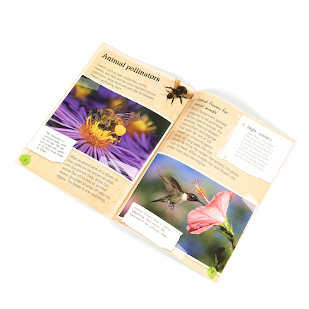 Parts of Plants Books 5pk  large