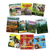 Rainforest Book Pack 10pk  medium