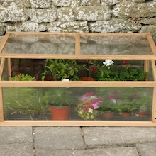 Cold Frame  medium