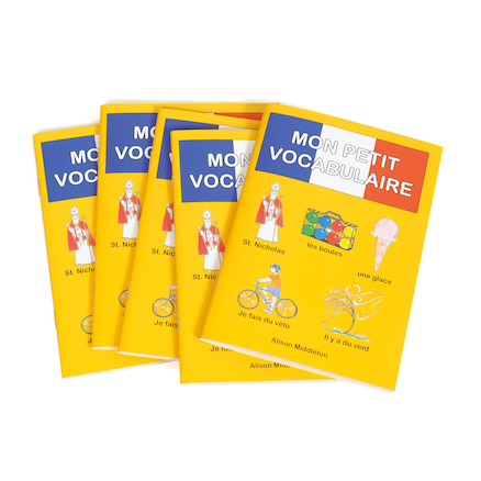 French Vocabulary Books 5pk  large
