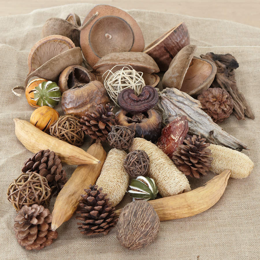 Buy natural materials collection 30pcs tts for Materials for kids