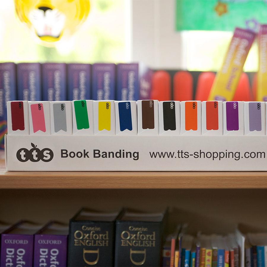 Buy Colour Book Band Labels 4250pcs Tts