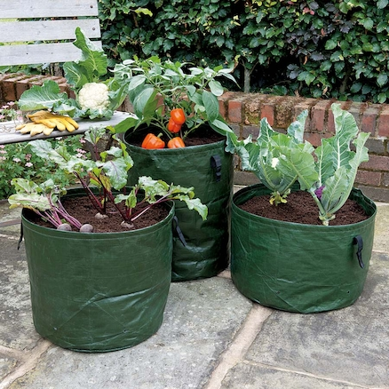 Vegetable Planters 3pk  large