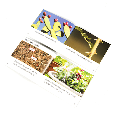 All About Plants Books 5pk  large