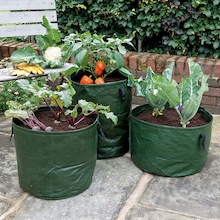 Vegetable Planters 3pk  medium