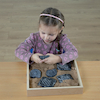 Sensory Fossil Replica Set 6pcs  small
