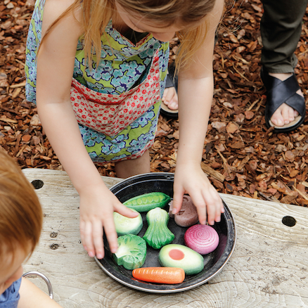 Mud Kitchen Vegetable Stones 8pk  large
