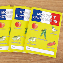 French Vocabulary Word Books 30pk  medium