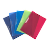 Assorted A4 Colourful Clip Files  small