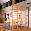 Double Hinged Fixed Gym Climbing Frame  small