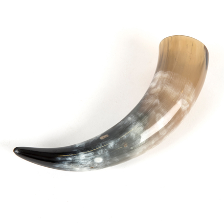 Viking Drinking Horn  large