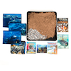 Topic Kit \- Under the Sea Y3\/4  small