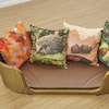 Seasons Cushions 16pk All Seasons offer  small