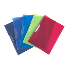 Assorted A4 Colourful Clip Files  medium