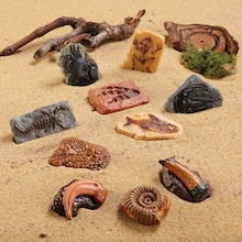 Sand Play Ancient Fossil Replicas 10pcs  medium