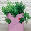 Strawberry and Herb Patio Planters 2pk  small