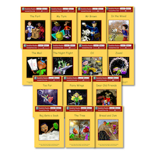 Dandelion Extended Phonic Readers Decodable Book Packs 14pk  medium