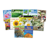KS1 All About Plants Books 10pk  small