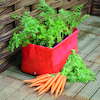Carrot Patio Planter  small