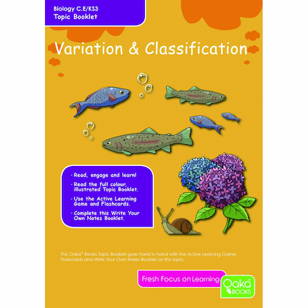 KS3 Variation and Classification Revision Cards  large