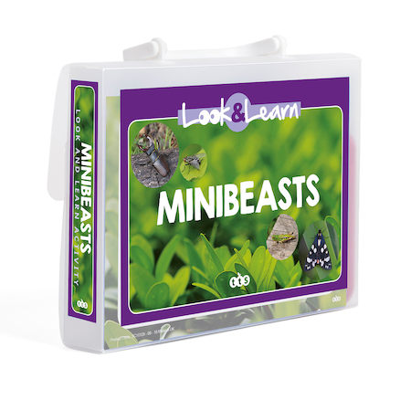 Look and Learn Minibeasts  large