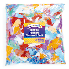Rainbow Craft Feathers Assorted 225g  medium