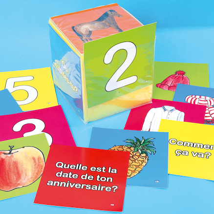 French Vocabulary Dice Insert Cards Set C  large