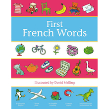 Oxford First French Words Dictionary  medium
