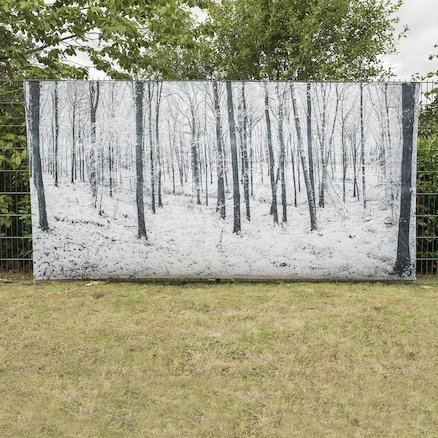 Outdoor Immersive Environment Backdrop Winter  large