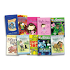 Level 12 Brown Band Booster Books 10pk  small