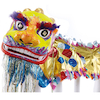 Chinese Dragon Costume Set  small