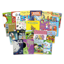 Engaging Boy Reader Books 20pk  medium