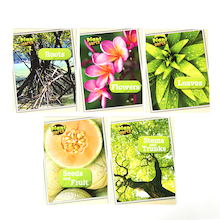 Parts of Plants Books 5pk  medium