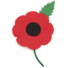 Remembrance Day Poppies 50pk  medium