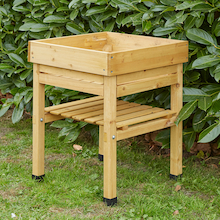 Veg Trug Kids Planter Natural Wood  medium