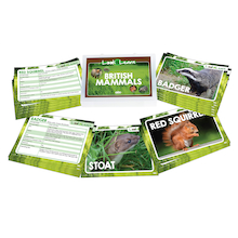 Look and Learn British Mammals Fact Cards  medium