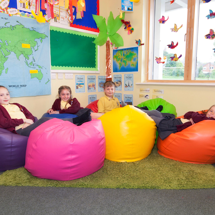 Giant Child Bean Bag Chair  large