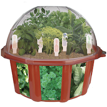 Grow Your Own Herbs Garden Dome  medium