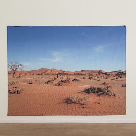 Immersive Environments Backdrop Hot Landscape  large