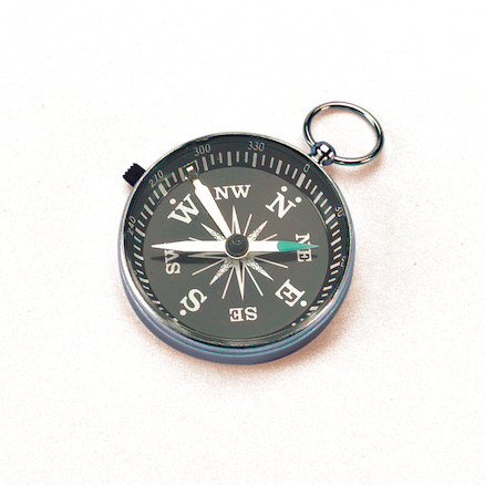 Deluxe Eight Point Compass 45mm Diameter  large