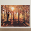 TTS Immersive Environments Backdrop Autumn Forest  small