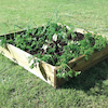Large Square Wooden Grow Bed  small
