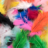 Brightly Coloured Feathers 28g  small