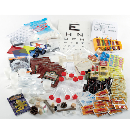 Exploring Your Senses Class Kit  large