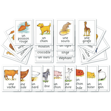 Animals French Vocabulary Flashcards A4 24pk  large